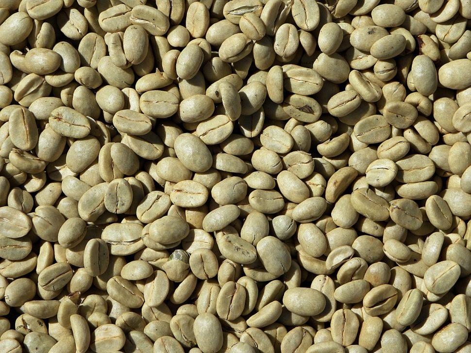 Caffè verde per combattere obesità, sovrappeso e la tendenza all'iperglicemia