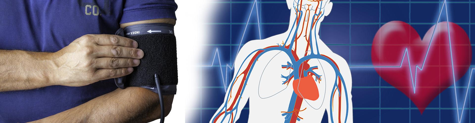 cardiologia HTC Centro Medico Stradella PV